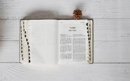 Der Schlüssel zur Einheit – Bibelgespräch 27. Oktober 2018